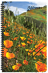 PA-22 Floral Large Address Book